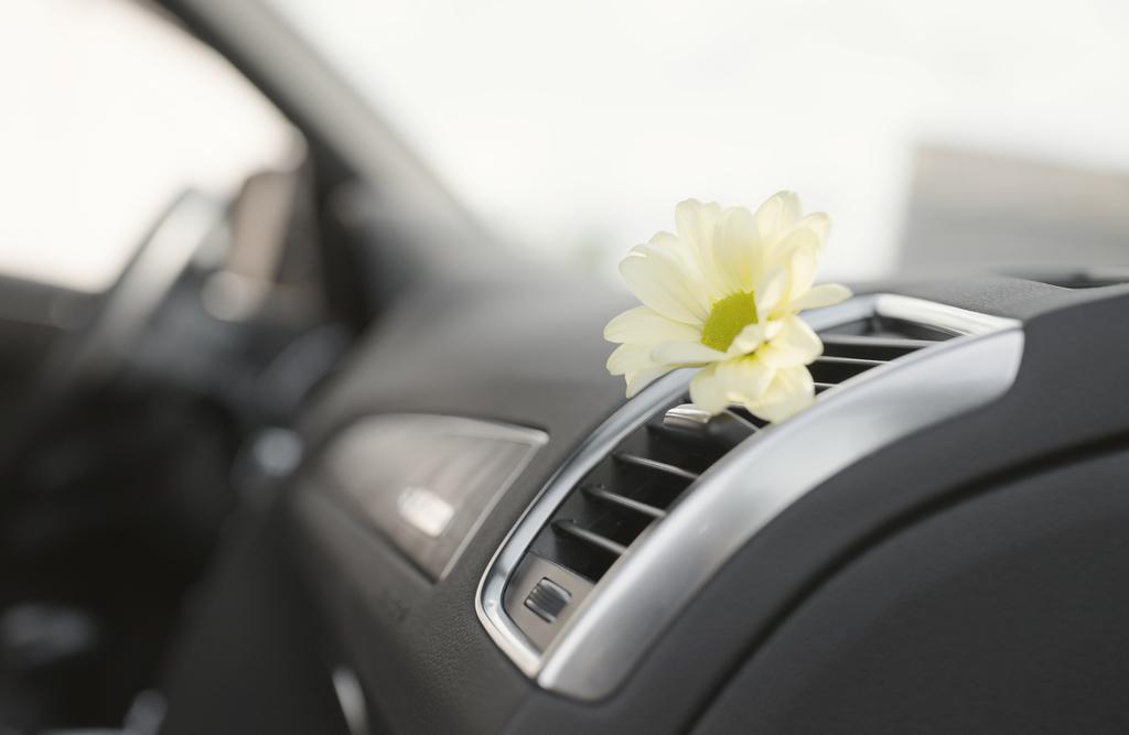 Jaki zapach do samochodu wybrać?